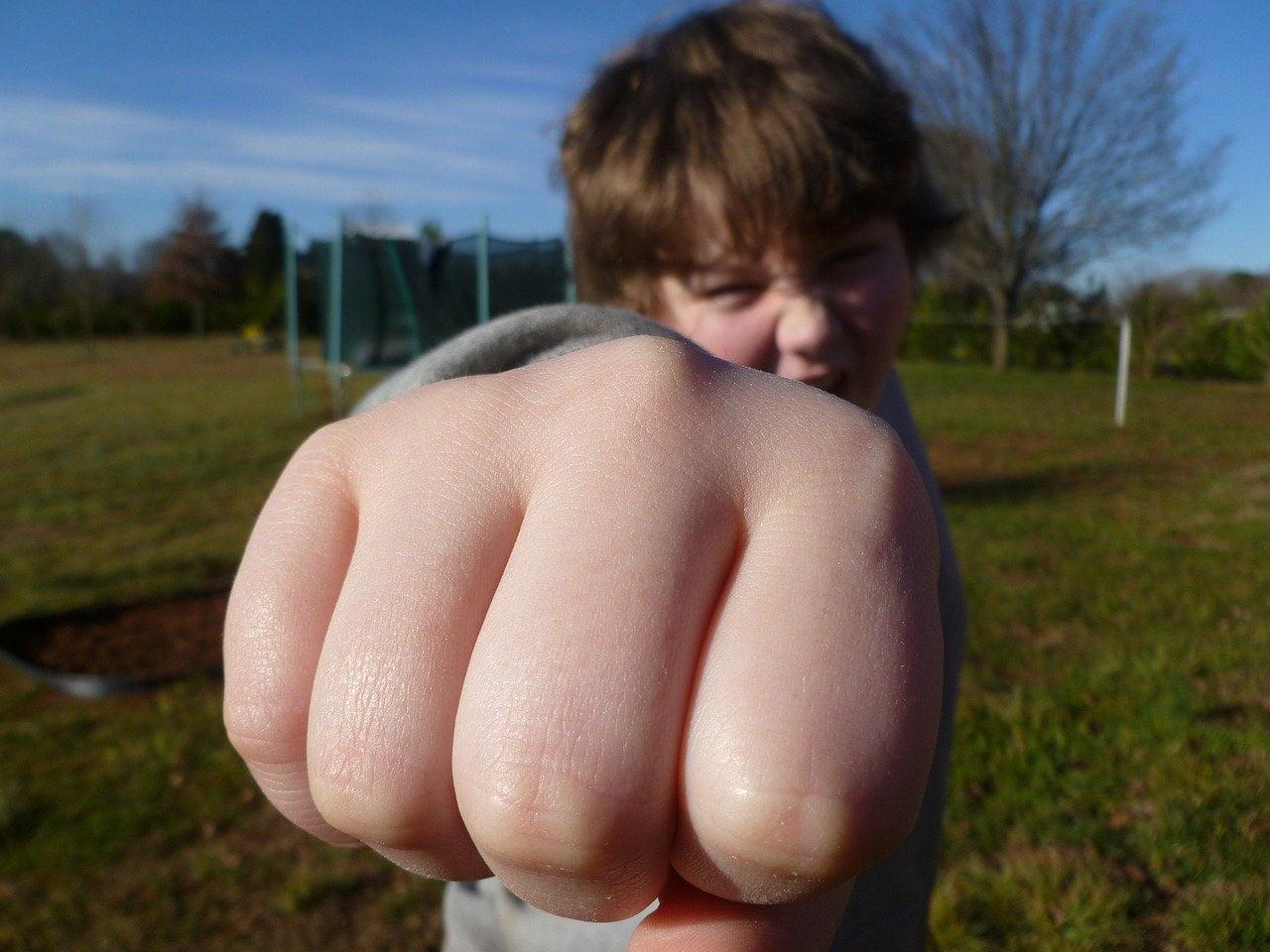 Агрессивный ребенок. Причины. Что делать?